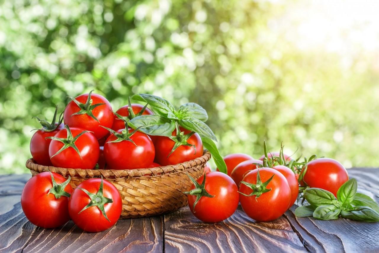 hasır sepet dolusu domates