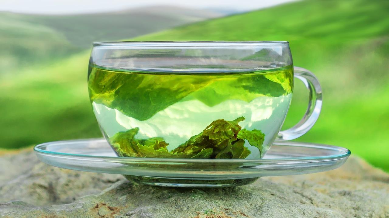 doğa görünümlü arka planın önünde şeffaf bir fincanda duran sıcak su içinde yeşil çay yaprakları